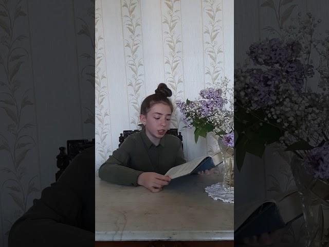 Изображение предпросмотра прочтения – ДАРЬЯДОЛГУШЕВА читает произведение «Богатырь» Н.В.Гоголя