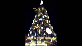 world's largest Christmas tree, größte Weihnachtsbaum der Welt