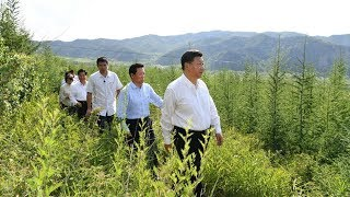Chinese President Xi Jinping inspects Inner Mongolia