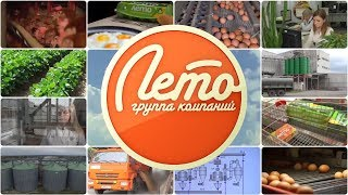 Группа компаний Лето | Яйцо куриное, ООО Птицефабрика, Яйцо столовое, Яичные продукты
