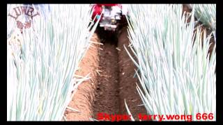 New Agriculture Machine  multifunctional 3TG 6YP management cultivator machine