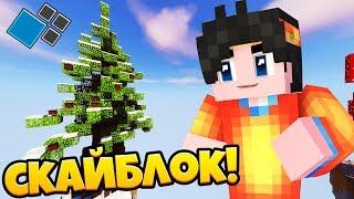 сКАЙБЛОК С ПОДПИСЧИКАМИ! СТРОИМ ВАРП! SkyBlock Gardex #1  Майнкрафт Cristalix Minecraft