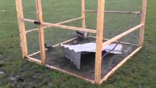 How to make ladder trap In Dunboyne
