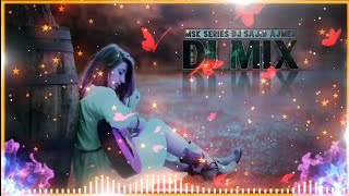 Tere Naal hi Rahna Ji  Love Song Mix  Dj Remix Version Song  DjSajid Ajmer