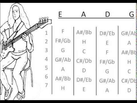 Basic Bass Guitar Chords