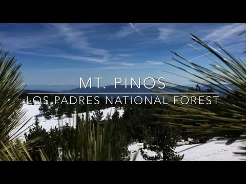 Mt. Pinos - Highest Point in Los Padres National Forest