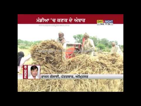 Tardy progress in wheat procurement, Farmers facing problems
