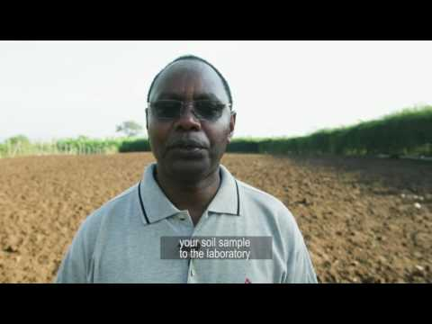 Getting crop nutrition right