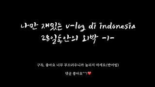 나만 재밌는 V-LOG di Indonesia #1 인…