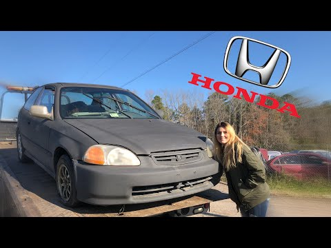 Civic DX Hatchback Walkaround!