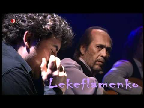 Paco de Lucia 2010 Concierto Alemania 5º