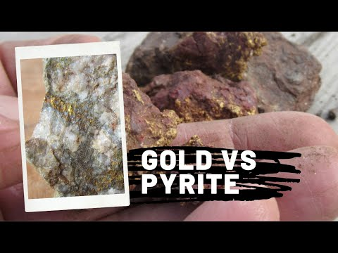 Gold and Pyrite