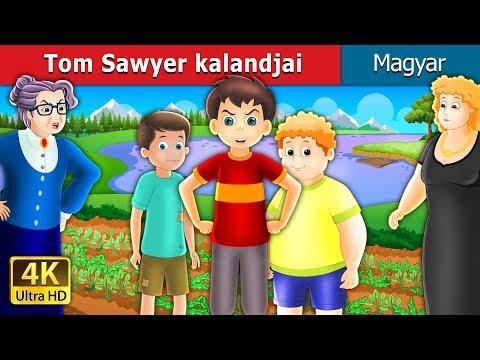 Tom Sawyer Kalandjai | Esti Mese | Magyar Tündérmesék