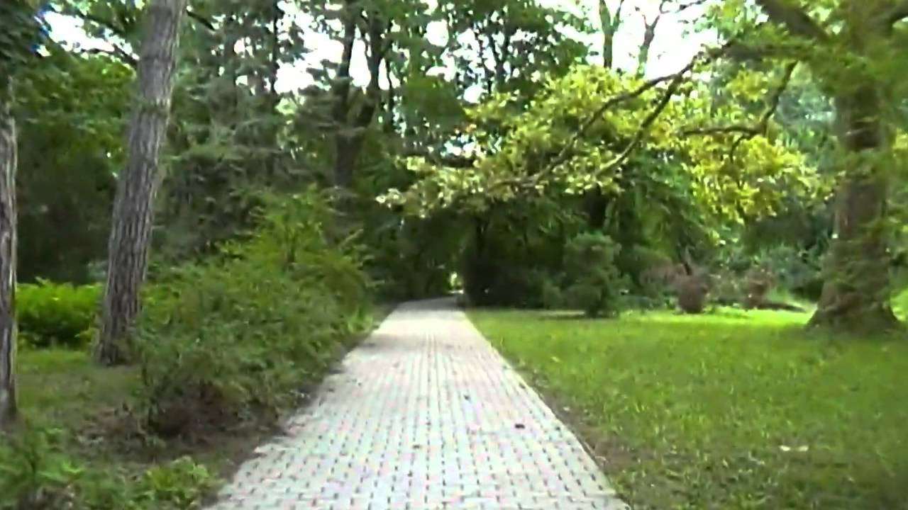 Arborétum   Tiszakürt