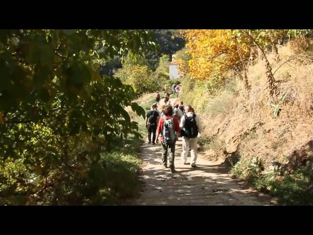 ΚΥΡΙΑΚΗ 4/11/2012 Πάρνωνας - Καστριτοχώρια