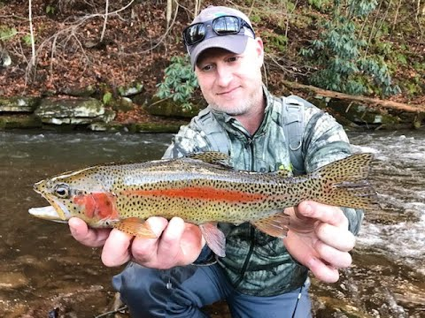 ALL NEW 2020 Winter Fly Fishing With Lively Legz