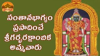 Sri Garbarakshambigai Amman Temple, Thirukarukavur - Parihara Temple for Pregnancy and Skin Diseases