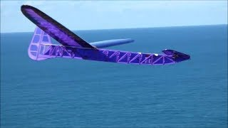 Own Design Canard Glider. Maiden Flight