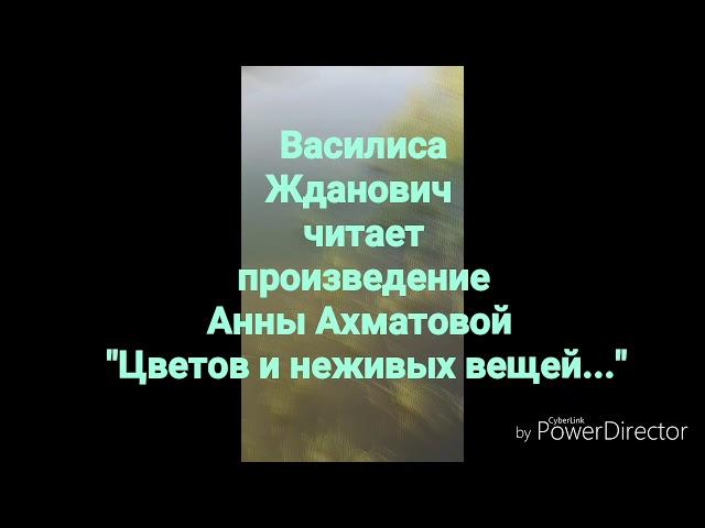 Изображение предпросмотра прочтения – ВасилисаЖданович читает произведение «Цветов и неживых вещей...» А.А.Ахматовой