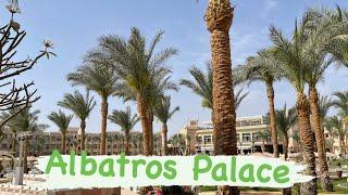 Albatros Palace Хургада 2021