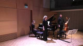 Nemtsov Duo plays Faure, Debussy & Saint-Saens