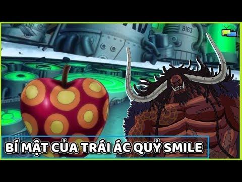 Bí mật của trái ác quỷ Smile và âm mưu của Kaido  Giả Thuyết  Truyện Tổng Hợp
