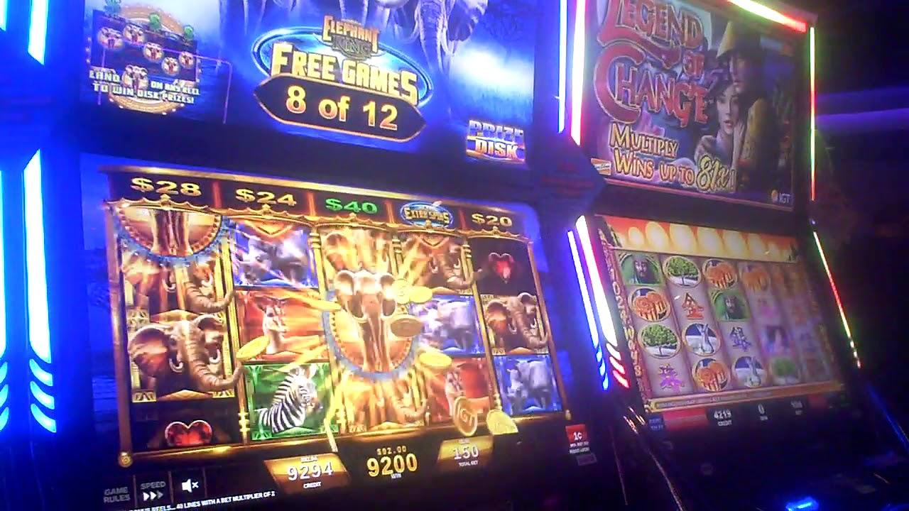 King Camel Slot Machine