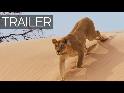 Planet Earth II Continues: Official Trailer