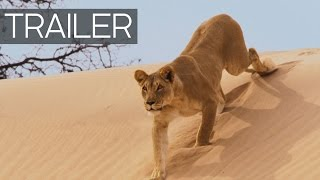 Planet Earth II Continues: Official Trailer thumbnail