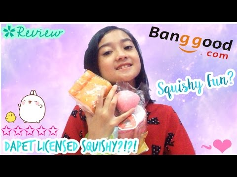 DAPET LICENSED SQUISHY?!?! #2 Review Package from banggood.com (Indonesia) | Friendship DIY