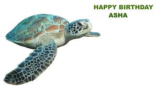 Asha  Animals & Animales - Happy Birthday