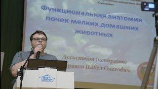 Конференция 2017.05.17 Доклад Варакса Павла Олеговича
