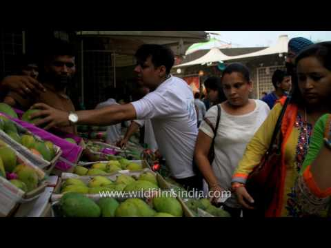 Fresh organic hybrid Mangoes for sale in Delhi
