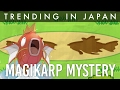 What is this Pokemon Magikarp Smartphone Game about?