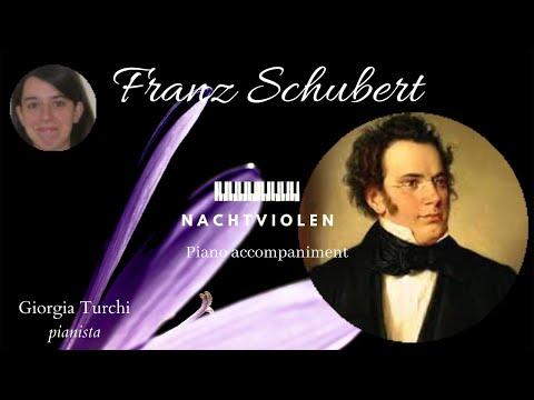 Franz Schubert: Nachtviolen D752, Piano Accompaniment - Giorgia Turchi