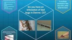 Bed Bug Pest Control Denver, CO