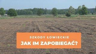 Opolskie: Szkody łowieckie – jak im zapobiegać?