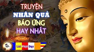 Kể Chuyện Đêm Khuya   Chuyện Nhân Qủa Phật Giáo Hay Nhất tập 1- Tác Phẩm Được Yêu Thích Nhất