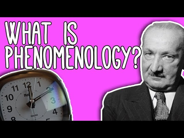 Phenomenology: WTF? Time and Phenomenology explained!