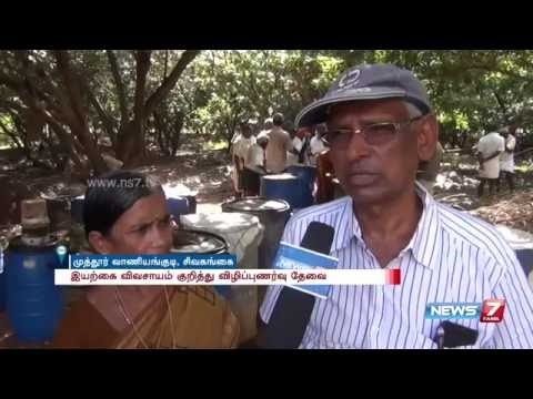 Couple renovated fallow land to fertile with organic farming at Sivagangai | News7 Tamil