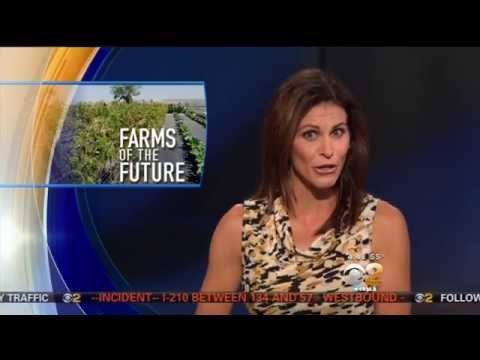 Farms of the Future, featured on CBS2 News