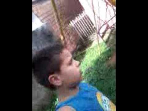 videos xmxx