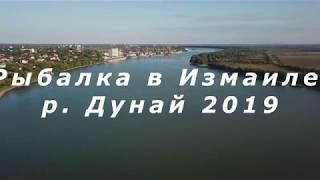 Рыбалка на Дунае г. Измаил 2019