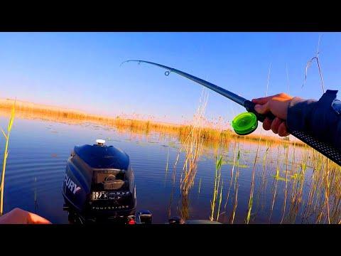 РАДИ ТАКИХ ПОКЛЕВОК СТОИЛО СЮДА ЕХАТЬ! Рыбалка на поплавок весной 2020! ДУШЕВНАЯ РЫБАЛКА