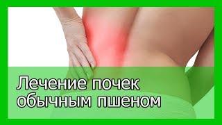 Лечение почек обычным пшеном
