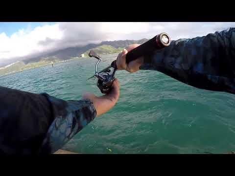 Inshore Fishing Oahu