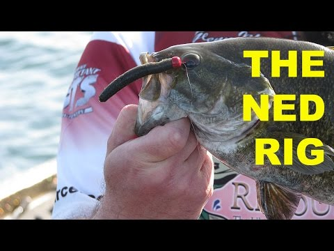 How To Fish The Ned Rig | Bass Fishing