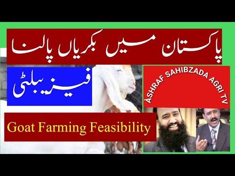 Goat Farming ki  Feasibility Dr Ashraf Sahibzada