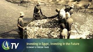 Investing in Egypt, Investing in the Future | Economy & Foreign Trade