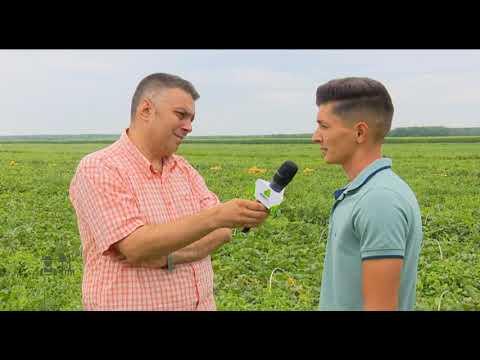 Portret de fermier - Pogoanele 21.07.2019